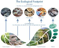 Ecological Footprint.jpg